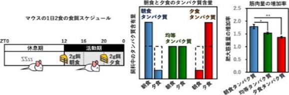 123%e5%8f%b7%e2%91%a2